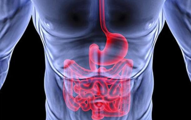 «Сердечный» продукт может защитить от язвы и рака кишечника