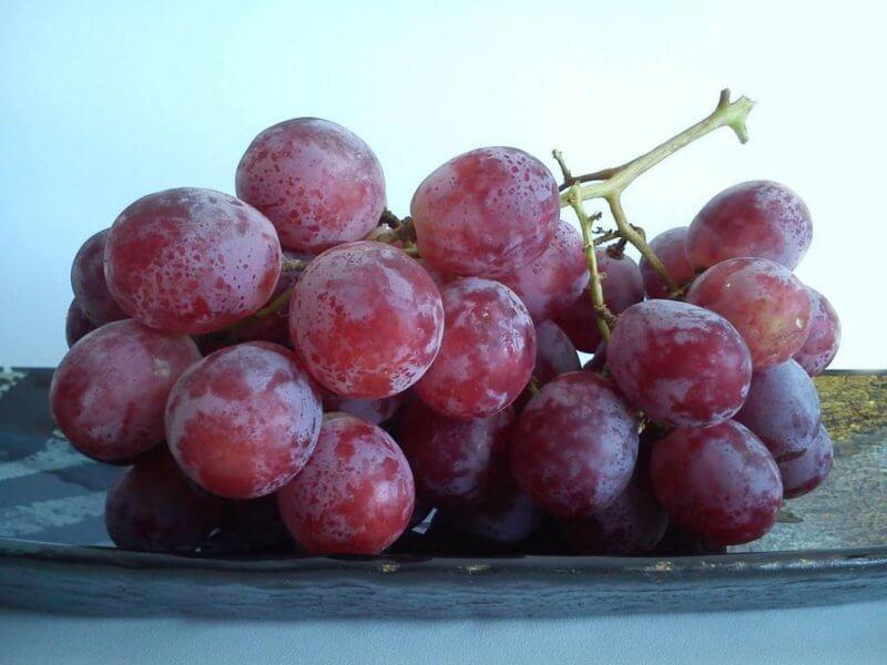 Медики подсказали, как нужно есть виноград для защиты от рака