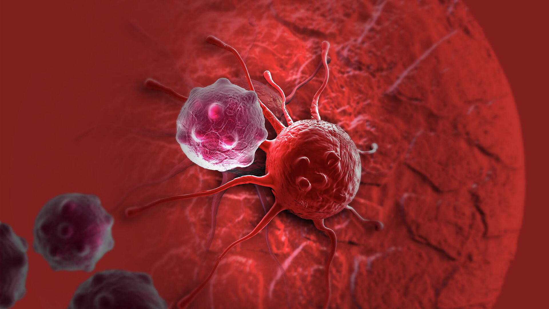 Назван продукт, снижающий риск развития рака