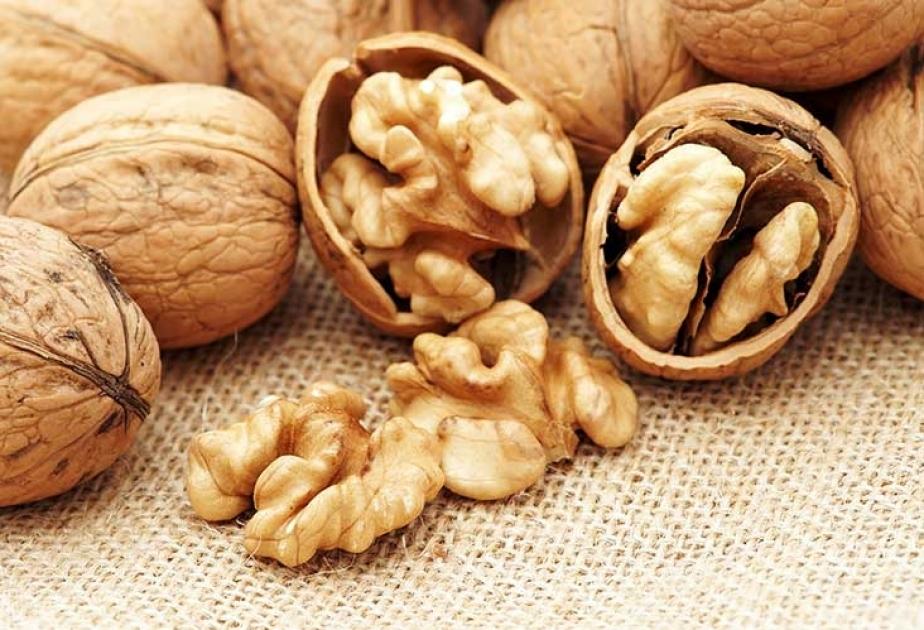 Употребление этих орехов способствует подавлению развивающегося рака груди