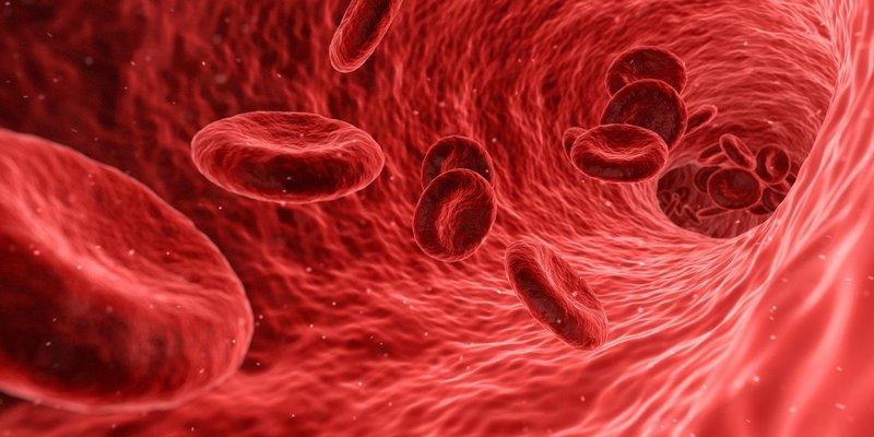Онколог назвал ранние признаки рака крови