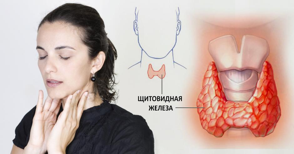 8 болезней щитовидной железы