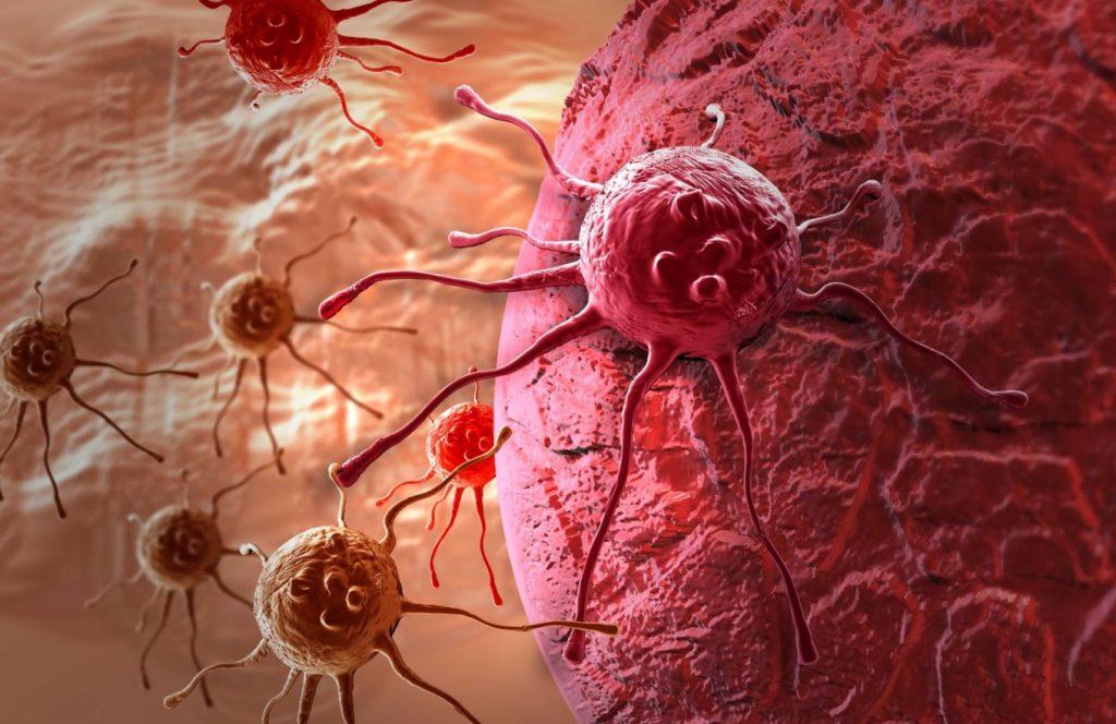 4 мифа о причинах рака