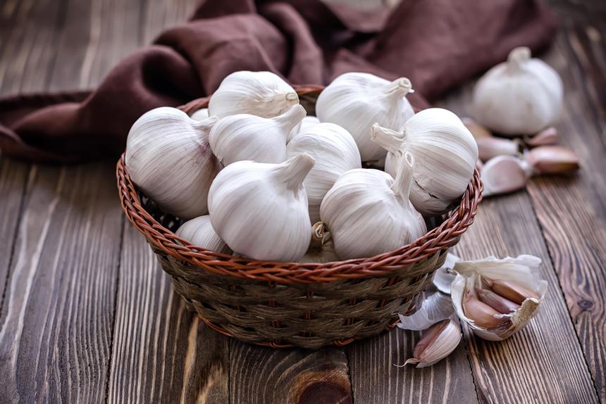Названы доступные продукты, которые снижают риск развития рака желудка и кишечника