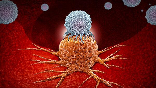 Найденный на поверхности раковых клеток белок помогает доставить лекарство в опухоль